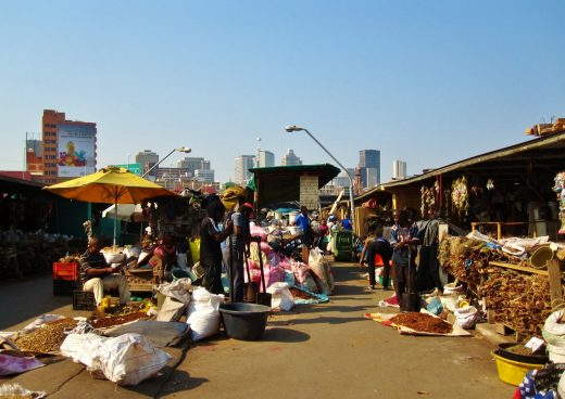 muthi market warwick durban tour